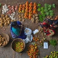 נשים ממיינות מזון בשוק בהודו. צילום: פיטר ריוורה