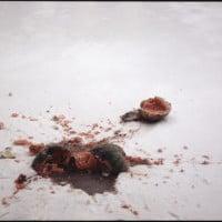 """מירצ'ה קנטור, אבטיח בשלג, 2007, צילום, 100X150 ס""""מ. באדיבות האמן וגלריה דביר."""
