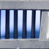 כלא וחירות