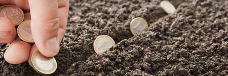 זריעת מטבעות אירו