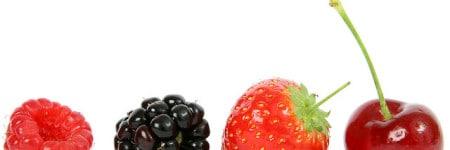 סלט פירות קיצי