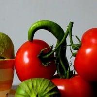 טבע דומם עם עגבניות וירקות