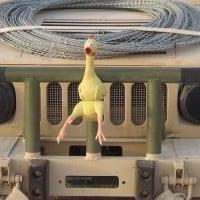 Humvee, רכב האמר.