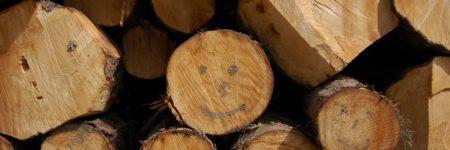 בולי עץ, חיוך