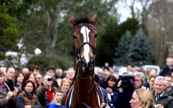 הסוס קאוטו סטאר בתהלוכת ניצחון בכפרו, שפטון מאלט (אנגליה), 2011