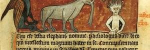 מדריך ימי הביניים