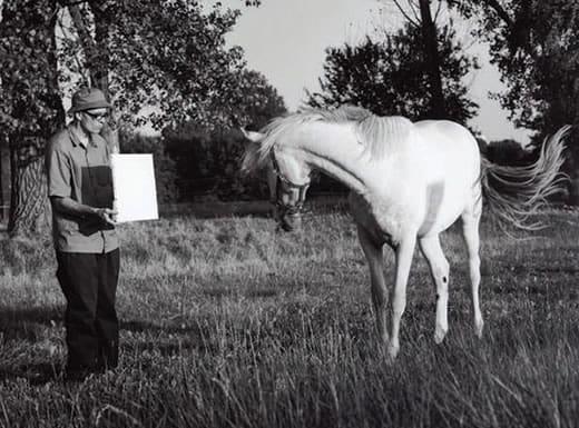 """ברונו ג'קוב. """"פסל בלתי נראה"""", 2012"""