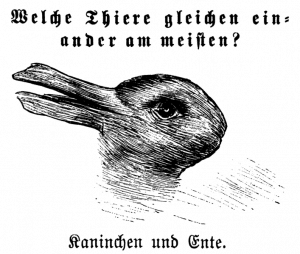 """דימוי של """"ברווז וארנב"""" כפי שפורסם ב-1892."""