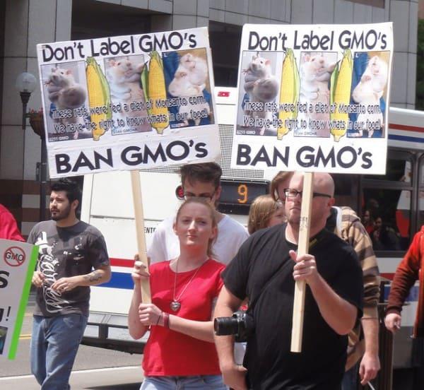 הפגנה בניו אורלינס נגד מזון מהונדס גנטית, במאי 2013. צילום: Becker1999