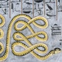 הנחש אפפ