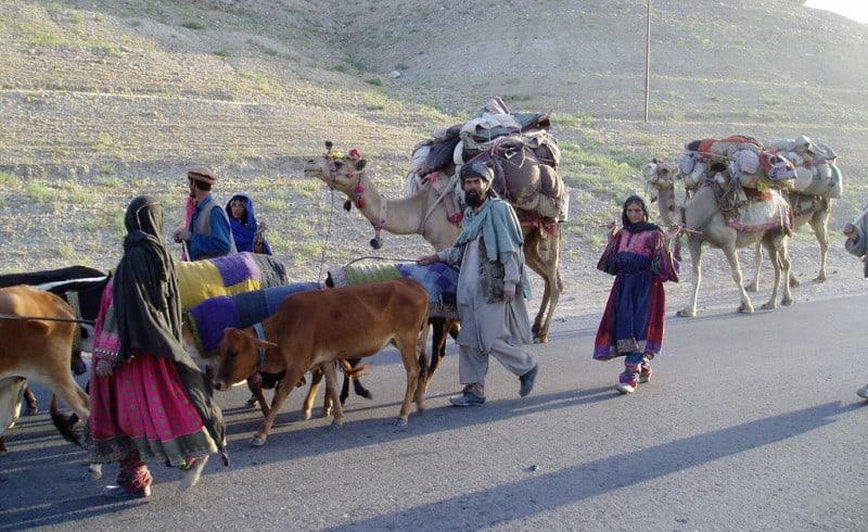 נוודים באפגניסטאן. צילום: טרייסי הנטר