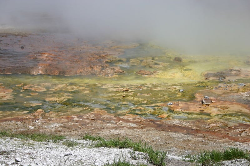 מושבות חיידקים קדומים תרמופילים צבעוניים בפארק ילוסטון. צילום: ווינג צ׳י פון