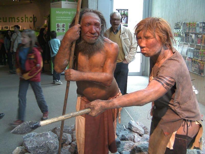 שיחזור של שני ניאנדרטלים במוזיאון האדם הניאנדרטלי בדיסלדורף, גרמניה. מתברר שהם היו הרבה יותר מתוחכמים שהערכנו בעבר. צילום: UNiesert