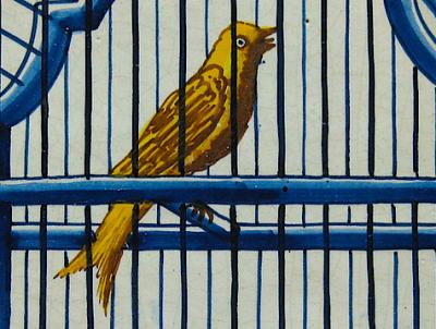 ציפור צהובה