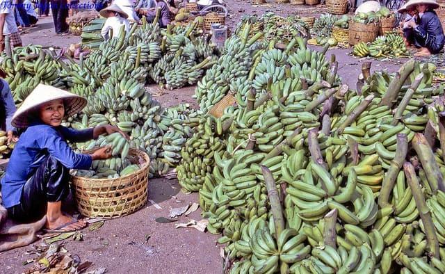 שוק בננות בויאטנאם. צילום: טומי יפן