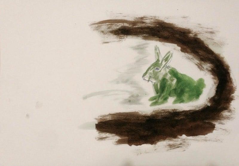 הארנב הירוק במנהרה, בועז ארד
