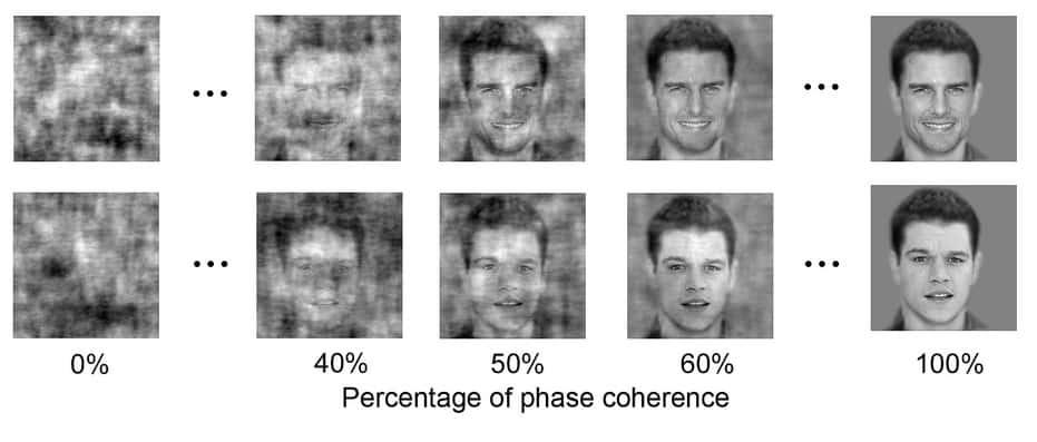 כימות המידע שנדרש על מנת לזהות פנים. המערכת מזהה שליש מהפנים שמצולמים באיכות של 40% עד 60% בהירות.
