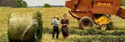 שני ילדים בשדה