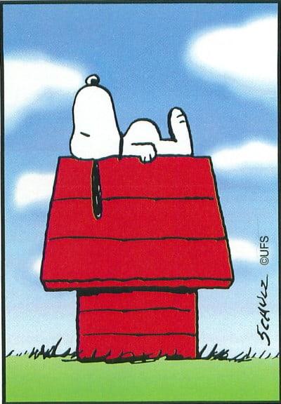 סנופי הכלב על מלונה אדומה