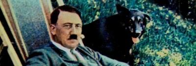 היטלר נח לצד כלב