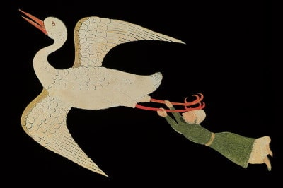 איש מחזיק בציפור ועף