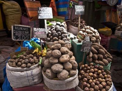 תפוחי אדמה בשוק בארקיפה, פרו
