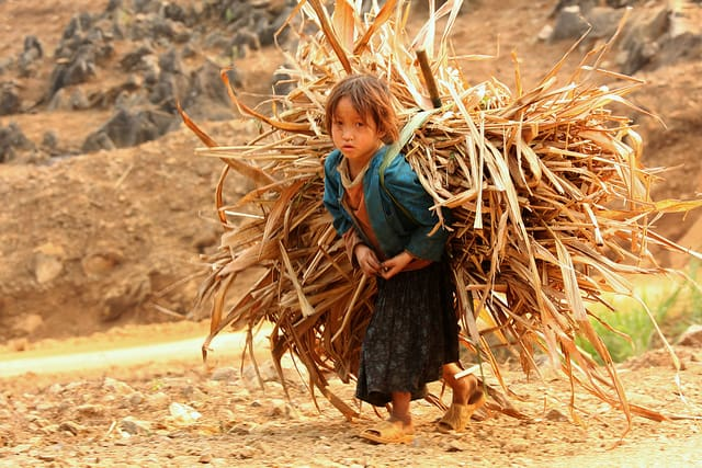 עבודת ילדים, וייטנאם