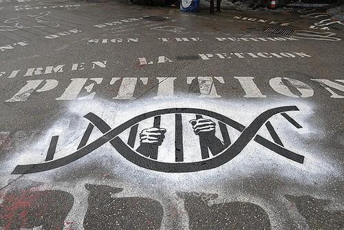 """דע את עתידתך באמצעות בדיקת דנ""""א"""
