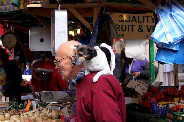 איש זקן עם כלב בשוק פורטובלו בלונדון