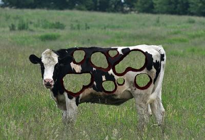 אמנות פרות
