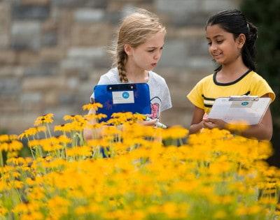 ילדות אמריקניות לומדות על מספרי פיבונצ'י מהתבוננות בטבע.