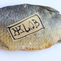 ז'לוב, דג מלוח, גרישה בלוגר
