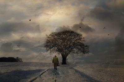 עץ החיים, עץ בסגריר ואדם פוסע