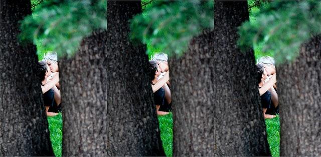 שלוש פעמים נאהבים ביער