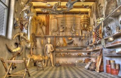 פריטים מוזרים, קרנות נרוואל, ממצאים ימיים