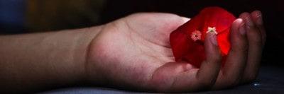 לב אדום בכף יד