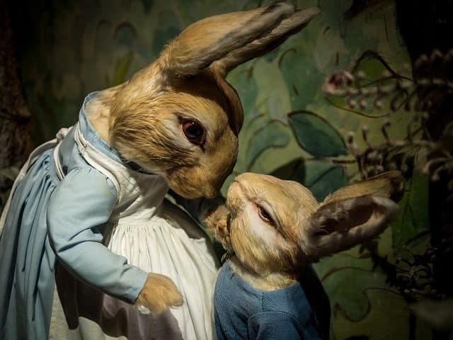 ארנבים, באטריקס פוטר