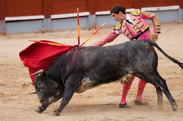 מלחמת פרים, מטדור, ספרד