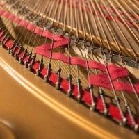 Steinway, פסנתר כנף