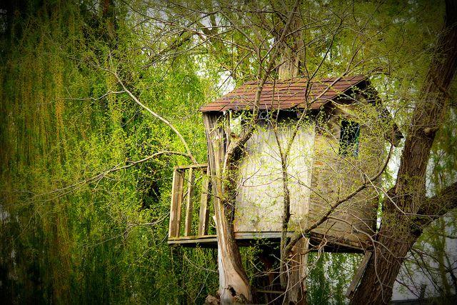בית עץ