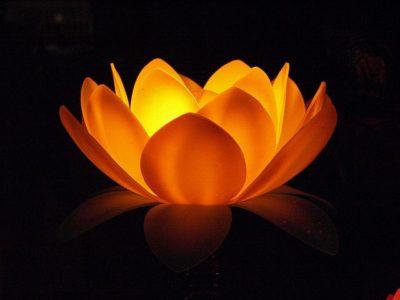 לוטוס, מנורה בצורת לוטוס