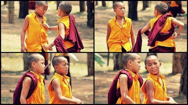 חברים, נזירים בודהיסטים, חברות, עליות ומורדות