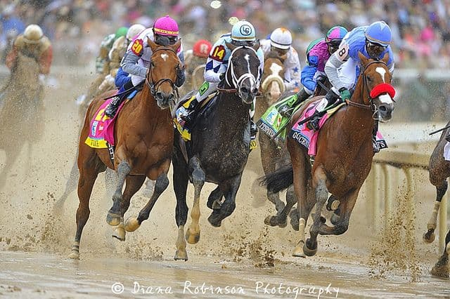 סוסים, מירוץ, קנטקי, דרבי