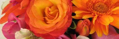 פרחים, זרי פרחים
