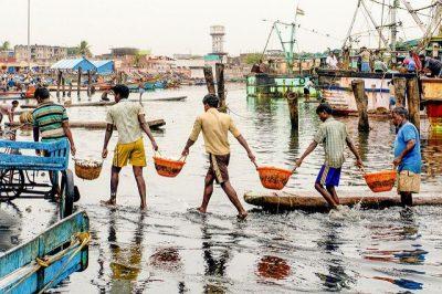 עבודת צוות, דייגים, הודו