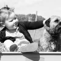 פעוטה וכלב על עגלה