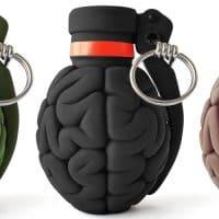 רימונים, מוח
