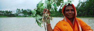 בנגלדש, הצפות, סחף