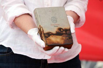 אמוק, סטפן צווייג, נאצים, שריפת ספרים