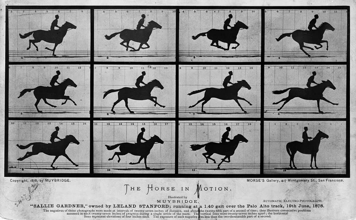 הסוס בתנועה, אדוארד מייברידג', סרט, קולנוע